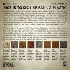 Rice and Pasta Alternatives by Dr. Sebi