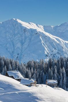 Beautiful Landscape of Nature Winter Pictures, Nature Pictures, Cool Pictures, Beautiful Pictures, Winter Photography, Nature Photography, Image Nature, Winter Magic, Winter Scenery