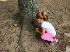 Parents and Tots Nature Walk Norwell, Massachusetts  #Kids #Events