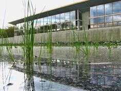 Omega Center for Sustainable Living Opens in Upstate NY #sustainability