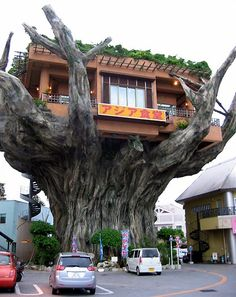 Feature: Incredible Tree House in Japan Doubles as Diner - TechEBlog ....♡♥♡♥♡♥Love★it