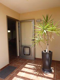 Una doble puerta de aluminio con vidrio te permite la entrada de luz a la vivienda y te protege de la suciedad exterior. En determinadas zonas de Tenerife soplan vientos alisios la mayor parte del año, es en estos lugares en dónde esta solución constructiva tiene mayor importancia.
