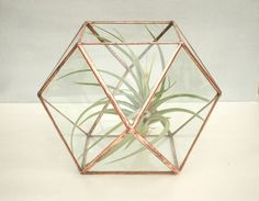 Zeno ‹›  Large Geometric Glass Terrarium with Copper Finish ‹› Lead-Free by AngularAlchemy on Etsy