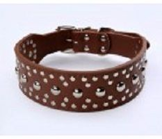 High quality & fashionable #Studded & Spiked Collar- Cooldogs is an ultimate online source of #petcareproducts in Australia. We are providing best quality products to help your pet grow in a better environment. This Studded & Spiked pure leather Dog Collar made from the finest leathers and highest quality finishing. Please visit: http://www.cooldogs.com.au/studded-n-spiked-collar.html