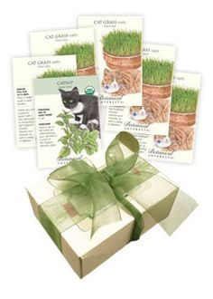 Gift idea - Cat Lovers Seed Collection from botanicalinterests.com