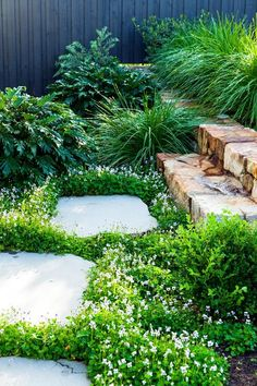 Native violet (viola hederacea) creates a pretty groundcover beside bluestone stepping stones in this cleverly designed garden on a slope. Photography: Scott Hawkins The post How To Maximise A Sloping Garden appeared first on Gardening. Back Gardens, Outdoor Gardens, Gardens On A Slope, Australian Native Garden, Australian Garden Design, Garden Stepping Stones, Coastal Gardens, Garden Steps, Front Garden Path
