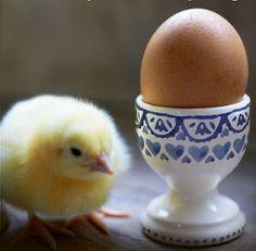 Emma Bridgewater blue sampler egg cup Easter 2012