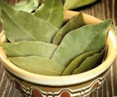 50 Pcs Bay leaf Laurus Tree Seeds Laurel Noble Natural Product At Your Home Bay Leaf Tree, Bay Leaves, Laurus Nobilis, Tree Seeds, Snack Recipes, Snacks, Live Plants, Artichoke, Green Beans
