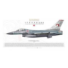 Air Fighter, Fighter Jets, Airplane Illustration, F 16 Falcon, Contemporary History, Navy Air Force, Aircraft Design, Army & Navy, Aviation Art