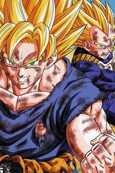 Dragonball Z Goku and Vegeta SSJ