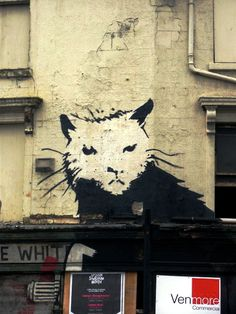 The Banksy rat in Liverpool