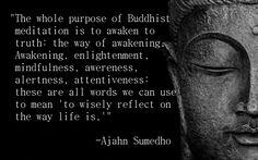 Ajahn Sumedho Quote 16