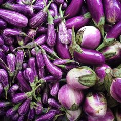 Purple #eggplant at Union Square Greenmarket in #Manhattan! #farmersmarketnyc pic via clfay on Instagram