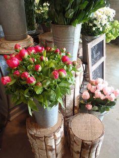 brocante shopping in paris!  chalkboard galvanized buckets, birch pedestals