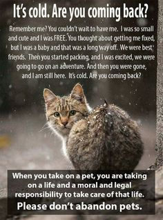 WHEN YOU TAKE ON A PET YOU ARE TAKING ON A LIFE AND A RESPONSIBILITY TO TAKE CARE OF THAT LIFE.Don't abandon pets!