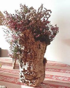 Tronco de árvore com casca se transforma em vaso