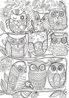 Fay Martin - Owls
