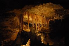 Stalactites - Victoria Fossil Cave, Naracoorte Caves National Park