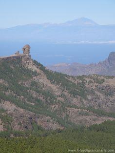 Roque Nublo G.Canaria y El Teide
