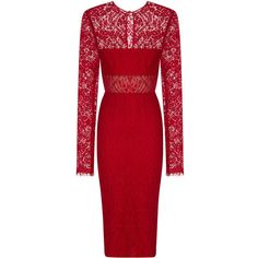 Alex Perry Madalene Cloque & Lace Long Sleeve Pencil Dress (92,010 PHP) via Polyvore featuring dresses, dresses/gowns, lace dress, red lace dress, long-sleeve lace dress, long sleeve pencil dress and long sleeve bodycon dress