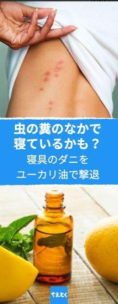 寝具のダニをユーカリ油で撃退! #ダニ退治 #ライフハック #ユーカリオイル #ユーカリ油 #アロマ #オイル #効果的 #おすすめ #話題 #人気 #簡単 #使い方 #作り方 #ヘルスケア #健康 #diy #ちえとく