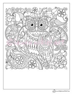 Cute Owl Paisley Pattern Adult Coloring Page