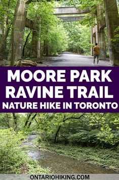 There's lots of scenic walking paths and hiking trails in Toronto! This loop trail combines three beautiful hiking trails in midtown Toronto through the Don Valley, including Moore Park Ravine and the Beltline Trail. City hiking trails | Toronto hiking trails | Beltline Trail | Moore Park Ravine | David Balfour Park | Evergreen Brickworks | Parks in Toronto | Trails in Toronto | Walking paths in Toronto | Places to visit in Toronto Travel Guides, Travel Tips, Travel Destinations, Solo Travel, Travel Usa, Moore Park, Hiking Photography, Canadian Travel, Walking Paths