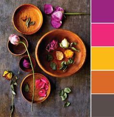 COLOR, COLOR THEORY, DAILY INSPIRATION, NEUTRALS, PINK, ORANGE, YELLOW, PLUM, PURPLES, FLOWERS                                                                                                                                                      More