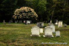 Cemetery Newry, Maine