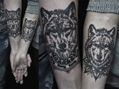 Often portrayed as tricksters and con artists in popular folklore, wolves have a family life that is more loyal and pious than most human relationships. Normally,packs consist of a male, a female and their offspring,essentially making wolf packs akin to a nuclear family.