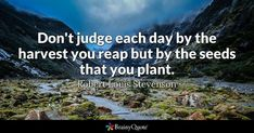 Don't judge each day by the harvest you reap but by the seeds that you plant. - Robert Louis Stevenson #brainyquote #QOTD #wisdom #life Kierkegaard Quotes, Soren Kierkegaard, Hope For The Day, Quote Of The Day, Robert Louis Stevenson Biography, Brainy Quotes, Life Quotes, Reap What You Sow, Respect Quotes