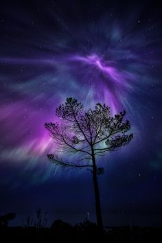 ~~Amazing night in Porvoo Finland | purple and blue Aurora borelis night sky | by Jari Johnsson~~
