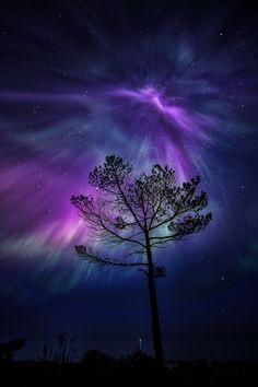 ~~Amazing night in Porvoo Finland | purple and blue Aurora borelis night sky | by Jari Johnsson~~
