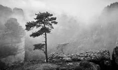 On the top - shared with pixbuf.com #landscape #nature #nationalpark #bw #blackandwhite #leica #monochrom #czechrepublic #czechia