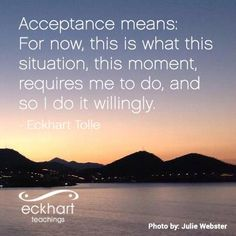 Acceptance means: For now, this is what this situation, this moment, requires me to do, and so I do it willingly. - Eckhart Tolle, author of THE POWER OF NOW  newworldlibrary.com
