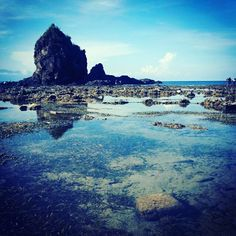 Credits to the owner of this photo  #inspirationalquotes #instagram #followforfollow #follow4follow #motivationalquotes #quotes #live #laugh #love #quotestoliveby #folowme #photography #outdoors #nature #autumn #autumn�� #fall #beach #waves #travel #philippines #naturephotography #baler http://quotags.net/ipost/1599644588434574205/?code=BYzFEckhMt9