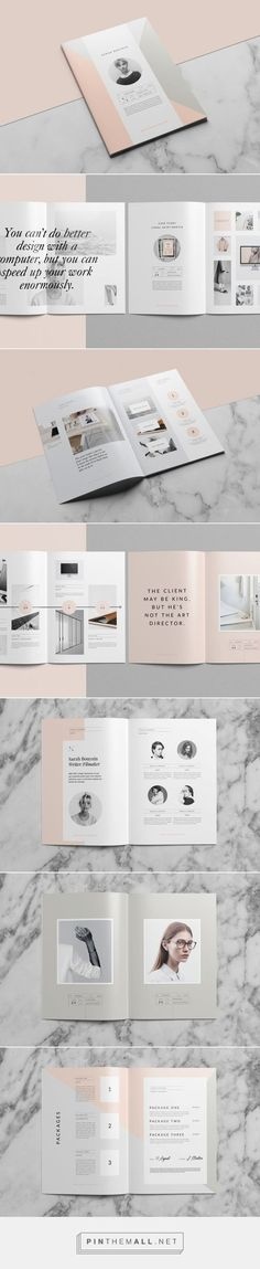 Saint-Martin Proposal on Behance - created via: