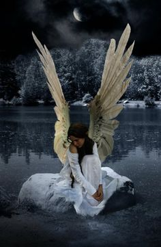memori, angel wings, heaven, art, fallen angels, angels among us, fairi, angelsamongus, guardian angels