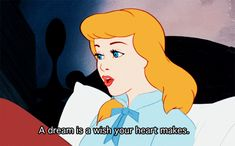 a dream is a wish your heart makes-favorite disney princess movie =]