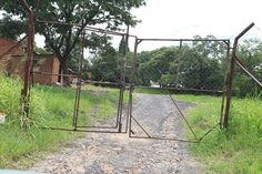 Deserted: The once-buzzing tobacco farm now stands deserted and is guarded by men wielding...
