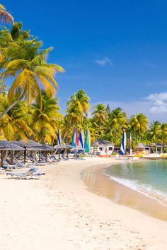 Antigua gets a lot of love for its fabled 365 beaches. While those strips of white sand are tremendous, the beaches are just the beginning. Nude Beach, White Sand Beach, Antigua Caribbean, Best Places To Retire, Travel Guide, Travel Ideas, Crystal Clear Water, Luxury Travel, Dolores Park