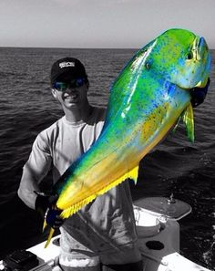 Dolphin caught by angler Matthew Spivey. #reellife #gearthatfitsyourlifestyle www.reellifegear.com