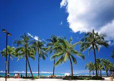 Waikiki beach #waikiki #his #ワイキキ