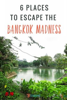Think Bangkok can be a little chaotic? Here are 6 places to visit in Bangkok to escape the madness