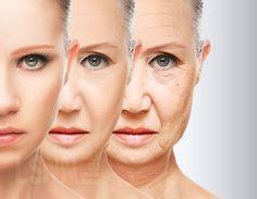 Scoperta una molecola contro l'invecchiamento cellulare