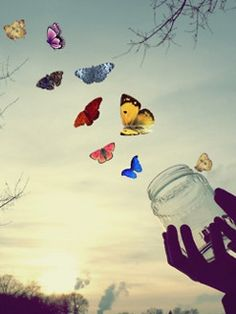 Butterfly fly away download