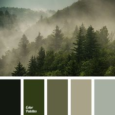 """dusty"" green, clothes color matching, color of spruce, dark green, gray-green, green and brown, green and brown tones, green color, interior color matching, shades of dark green, shades of green."