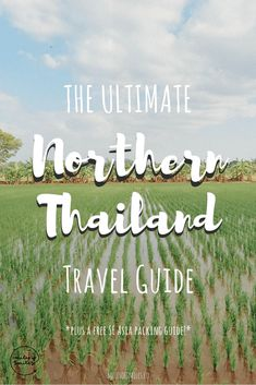 The Ultimate Guide to Northern Thailand, Click and Save this Pin! Northern Thailand Travel, Thailand Tours, Trekking Thailand, Things to do in Thailand, Places to Visit, Thailand Travel Guide, Where to go in Thailand, Best Places to Visit in Thailand, Planning a Trip to Thailand, Central Thailand Trip, Bangkok Thailand, Chiang Mai Thailand, Phetchabun Thailand, Pai Thailand, Thailand Travel Guides