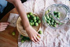 porclaim:  ume-shu making by hiki. on Flickr.
