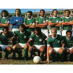 A Eterna Academia: dos 903 jogos de Ademir aos 182 gols de César Maluco, uma legião de craques que fez história! #Palmeiras101anos - ESPN.com.br